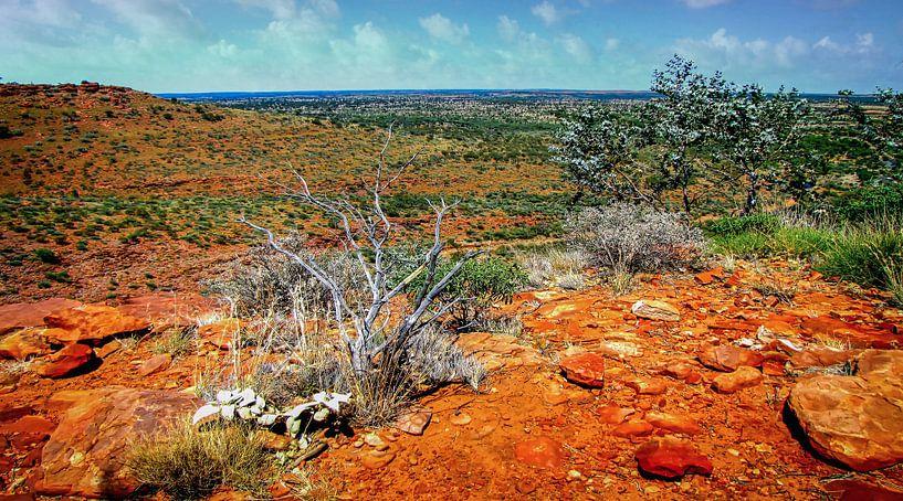 Uitzicht over de vallei in Watarrka Nationaal Park, Australie van Rietje Bulthuis