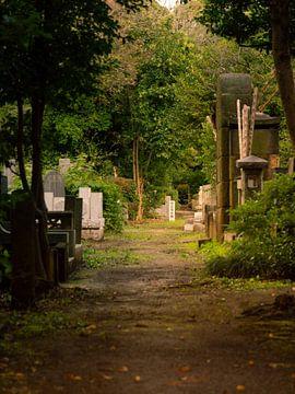 Tokioter Friedhof von Marleen Dalhuijsen