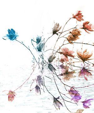 Magnolia von Jacky Gerritsen