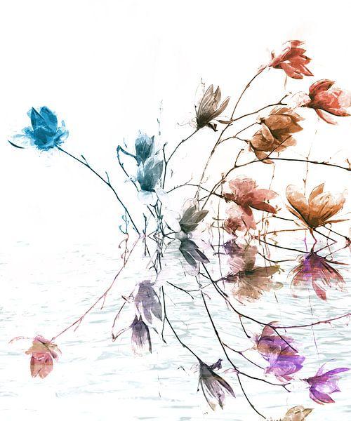 Magnolie von Jacky Gerritsen