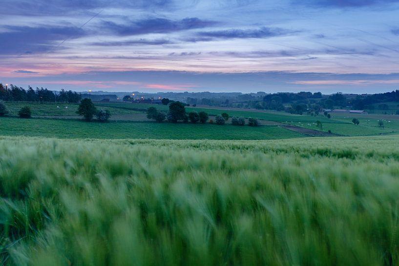 Vlaamse Ardennen van Steven Hendrix