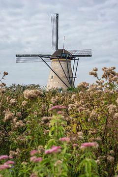 Kinderdijk molen in een veld met bloemen