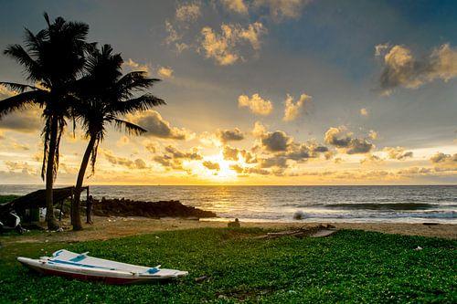 Zonsondergang in Sri Lanka van
