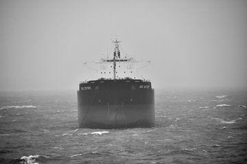 Sea Victory van