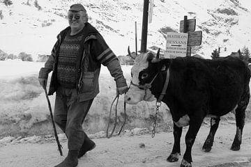 Man met koe van R. de Jong