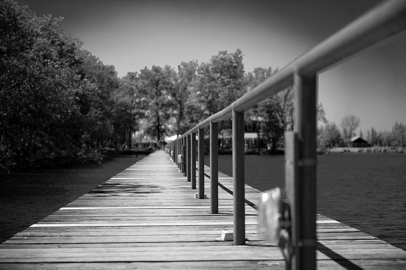 Het pad van Michel Nauta