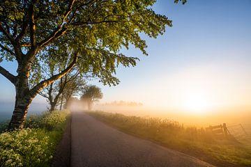 Morgen in Nordholland von Peter Korevaar