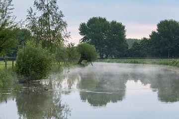 Ochtendnevel op de Kromme Rijn van Marijke van Eijkeren