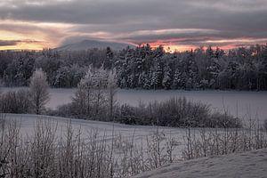 Sunset@sånfjället N.P. van Marco Lodder