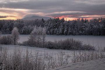Sunset@sånfjället N.P. von Marco Lodder