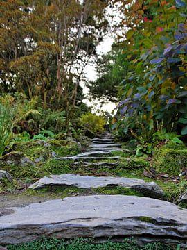 Der Weg über die Steine von Hannon Queiroz