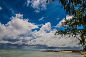 Strandje op de Seychellen van Erwin van Liempd