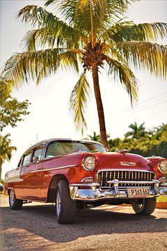 Voiture classique sous un palmier à la Vieille Havane, Cuba sur Wouter van der Ent