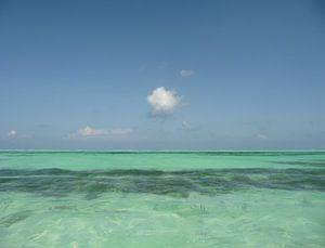 'Wolk', Zanzibar