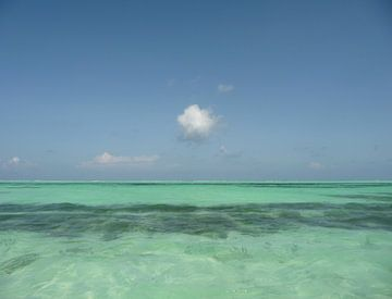 'Wolk', Zanzibar van Martine Joanne