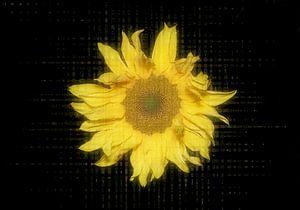 Digitale fantasie van een wilde zonnebloem van Ribbi The Artist