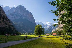 Lauterbrunnen est un petit village de la région suisse de la Jungfrau. L'étroite vallée de Lauterbru sur Ton Tolboom