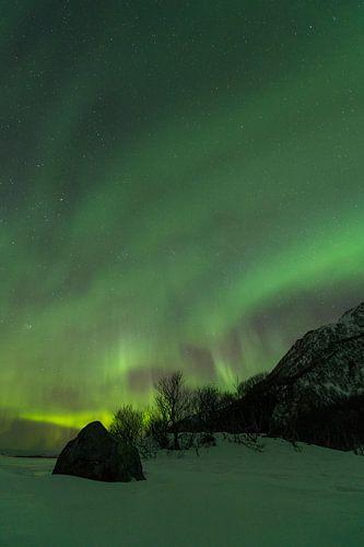 Noorderlicht boven een winterlandschap in de Lofoten in Noord-Noorwegen