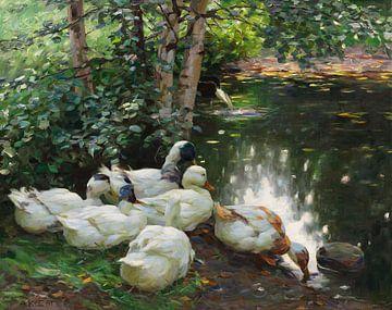 Sechs Enten am Teichufer, ALEXANDER KOESTER, Um 1908 von Atelier Liesjes