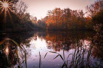 Herfstmeer von Peter Heins