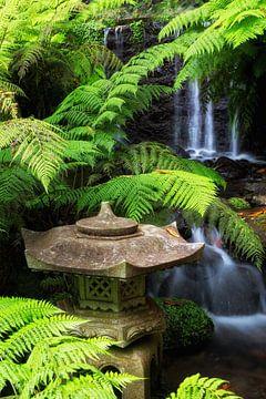Japanese Garden sur Thomas Herzog