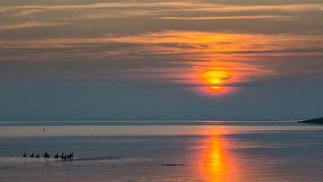 Kalme zonsondergang  sur