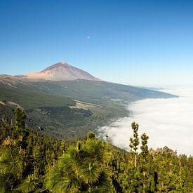 Teide and Orotava cloud van Michael Valjak