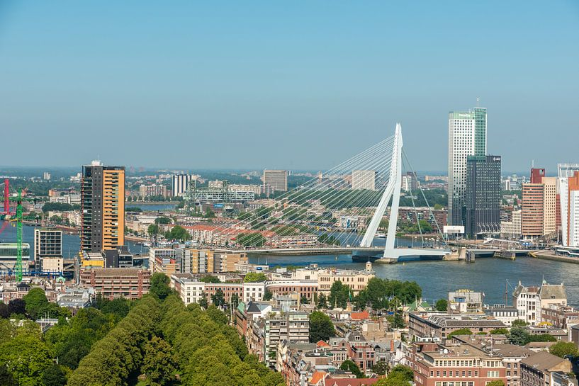 Rotterdam de Erasmusbrug in een Stadsgezicht. van Brian Morgan