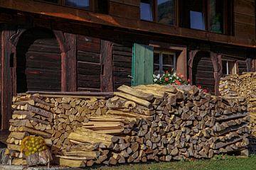 Brandhout van Jürgen Wiesler