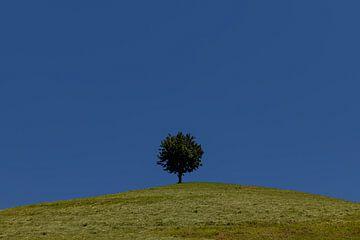 Minimalismus - 1 von Adelheid Smitt