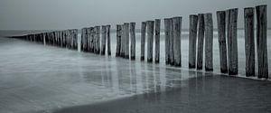Strand Zeeland van Ton van den Boogaard