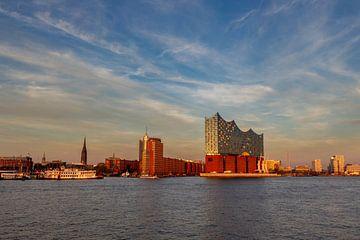 Elbphilharmonie in Hamburg von Dirk Rüter