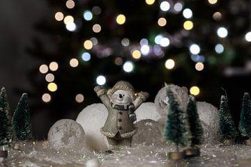 glücklicher Schneemann von Tania Perneel