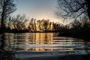 Ondergaande zon schijnt door de bomen over het water van Henk Hulshof