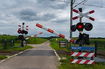 Spoorwegovergang -wacht er komt een trein. van Cilia Brandts