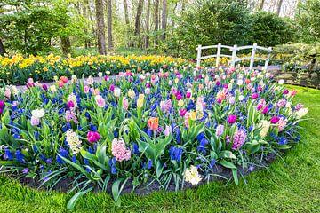 Blumenfeld mit Blumenzwiebeln und Brücke in Keukenhof von Ben Schonewille