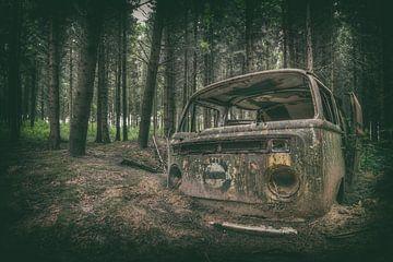 VW in den Wäldern von Vivian Teuns