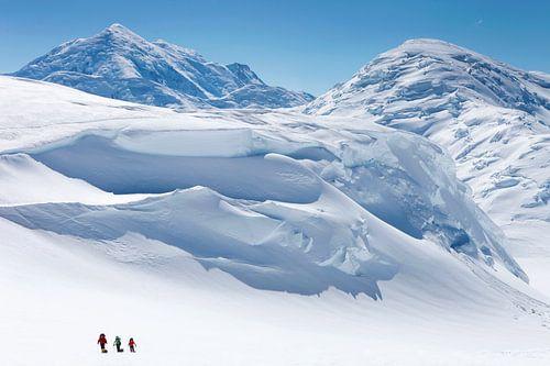 Alpinisten in de wildernis op Denali, Alaska