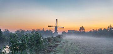 3 Hasen im Morgentau auf der Wiese von Rossum-Fotografie