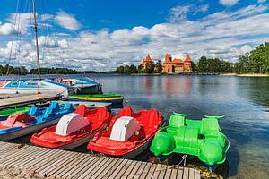 Trakai Island Castle, Lithuania van