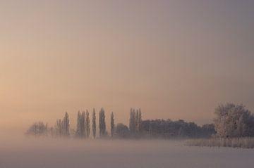 Mistige morgen van Karen Havenaar