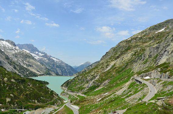 Swisspass. van Marcel van Duinen