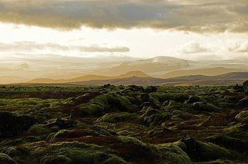 Mystisches Lavafeld in Island von Renzo de Jonge