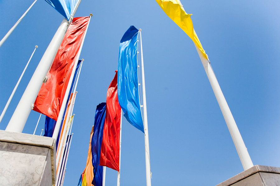 Flying flags van Frank Diepeveen