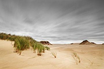 Storm over zandduinen van Ralf Lehmann