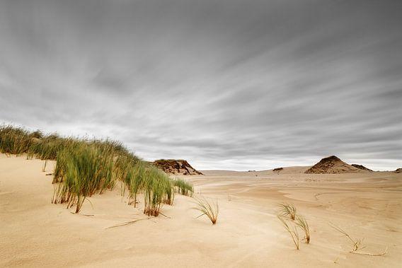 Sturm über Sanddünen