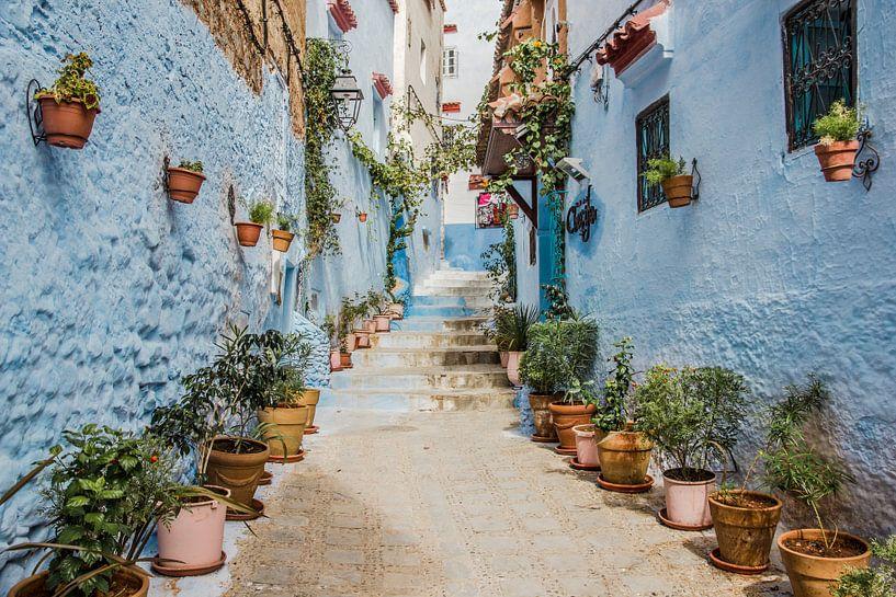 Straatje in Chefchaouen, het blauwe stadje van Marokko van Expeditie Aardbol