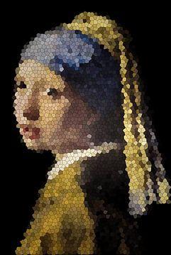Het meisje met de parel van Jessica Berendsen