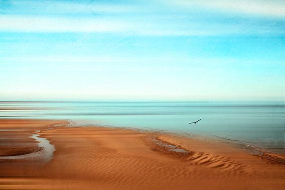 Sense of Space - Low Tide