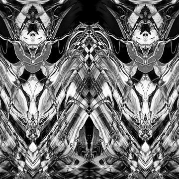 BLACK & WHITE CURIOSITY  von Pia Schneider